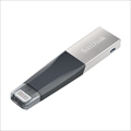 iXpand Mini Flash Drive SDIX40N-064G-GN6NN