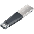iXpand Mini Flash Drive SDIX40N-128G-GN6NE ☆6個まで¥300ネコポス対応可能!